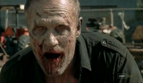 merle zombe